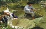 Năm 2010: Tiếp tục hỗ trợ lãi suất phát triển nông nghiệp, nông thôn