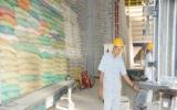 4 triệu tấn kho trữ lúa gạo ĐBSCL: Tăng giá trị hạt gạo Việt Nam