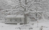 Washington tuyên bố 'tình trạng bão tuyết khẩn cấp'