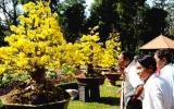 Hội Hoa xuân TPHCM 2010: Gần 400 giải thưởng dành cho các bộ môn