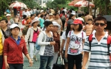 Khu du lịch Lạc Cảnh Đại Nam Văn Hiến: Đón gần 1 triệu lượt khách tham quan