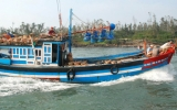Chuyến ra khơi đầu năm bội thu của ngư dân