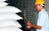 Đấu trí trên thị trường gạo thế giới