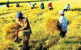Ngân hàng Thế giới tiếp tục hỗ trợ Việt Nam