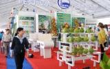 Festival trái cây Việt Nam: Khai mạc triển lãm hội chợ và hội thi trái cây ngon và an toàn
