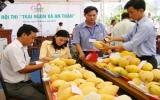 Tiến sĩ Nguyễn Minh Châu, Viện trưởng Viện cây ăn quả miền Nam: Cần quy hoạch hiệu quả chuyên canh các vùng trái cây