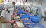 Xuất khẩu thủy sản: Hướng đến mục tiêu 4,5 tỉ USD