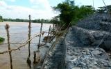 Di dời các hộ dân ra khỏi vùng có nguy cơ sạt lở cao sông đồng nai: Cần giải quyết dứt điểm