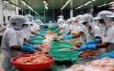 Kim ngạch xuất khẩu cá tra sẽ đạt 1,5 tỷ USD trong năm nay