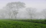Bình yên phố núi B'Lao