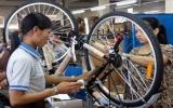 Đánh thuế phá giá, doanh nghiệp xe đạp trong nước khốn đốn
