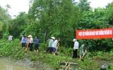 Đảng bộ xã Bình Nhâm (Thuận An): Chú trọng phát triển vườn cây ăn trái