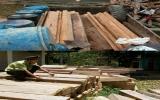 Quảng Nam: Phá rừng phòng hộ để khai thác vàng