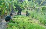 Đoàn viên thanh niên huyện Thuận An: Xung kích trên nhiều mặt trận