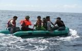 Tác nghiệp trên biển Đông