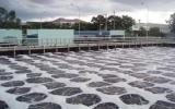 Becamex IDC: Doanh nghiệp xanh vì môi trường