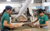 Xuất khẩu gỗ đạt hơn 603 triệu USD