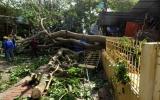 5 người mất tích trong bão đã được tìm thấy
