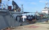 Đưa 14 ngư dân bị nạn do bão trở về đất liền an toàn