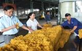 Công ty Cổ phần Cao su Phước Hòa: Vững bước trên đường hội nhập