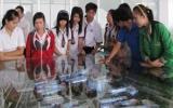 Ngày hội thông tin dự án Đại học Quốc tế Miền Đông