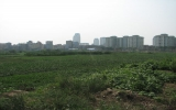 Tập đoàn Kinh Bắc tính xây tòa nhà cao 600m