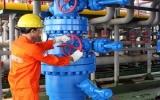 Mỏ Bạch Hổ khai thác thành công dòng dầu 600 tấn