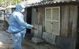 Huy động mọi lực lượng phòng, chống dịch sốt xuất huyết