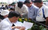 Phát triển nông nghiệp công nghệ cao:Cần nhiều giải pháp đồng bộ