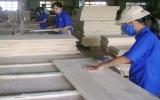 Ngành gỗ  Bình Dương và những đòi hỏi cấp thiết