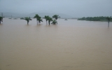 10.000 dân Quảng Bình chạy lũ trong đêm