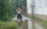 Triều cường gây ngập cục bộ một số khu vực ven sông Sài Gòn