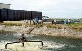 Bình Dương đẩy mạnh công tác bảo vệ môi trường