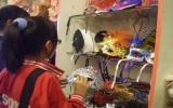 Rộn ràng các hoạt động Lễ hội Halloween 2010