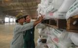 Ngừng xuất khẩu phân bón đến hết năm 2010