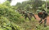 Đảng ủy - chỉ huy trung đoàn 271: Đẩy mạnh các hoạt động giúp dân