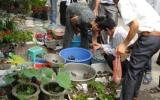 Thăm chợ Hàng