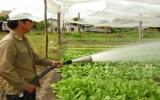 Vật tư nông nghiệp tăng giá: Nông dân càng thêm khó!