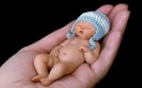 """""""Bé sơ sinh"""" nằm trong lòng bàn tay"""