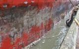 Tàu chở hàng kẹt ở cảng vì… mắc lưới ngư dân
