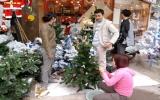 Hàng Việt Nam chiếm lĩnh thị trường Noel