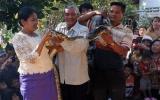 Đám cưới trăn tại Campuchia