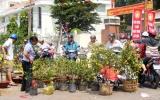 Chợ hoa kiểng ngày 30 tết