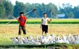 Cánh diều vàng 2010: Nóng trước giờ trao giải