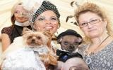 Tiêu 40.000USD làm đám cưới cho chó!