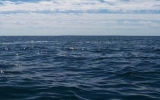 Nước ở Ấn Độ Dương đổ vào Đại Tây Dương tăng