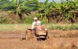 Xây dựng nông thôn mới: Cần phát huy tối đa sức mạnh cộng đồng