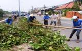 Ra quân vớt lục bình, rác thải dọc bờ kè Bình Nhâm