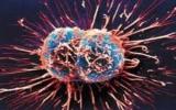 Phương pháp mới trong điều trị căn bệnh ung thư