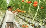 Cùng nông dân xây dựng nông thôn mới